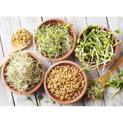 Зерна для проращивания Bio Green Vitamin 8 видов