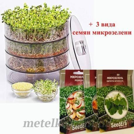 Спраутер ProVita + 3 вида семян микрозелени
