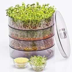 Проращиватель зерна, семян и микрозелени Sprouter ProVita