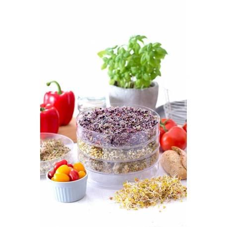 Емкость для проращивания зерен и семян (дополнительная) 1 ярус